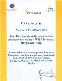 certificato partner of excellence 2011